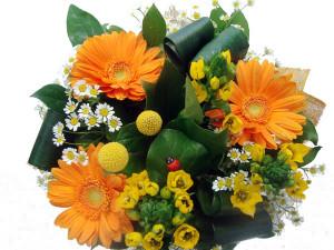 купить цветы саратов